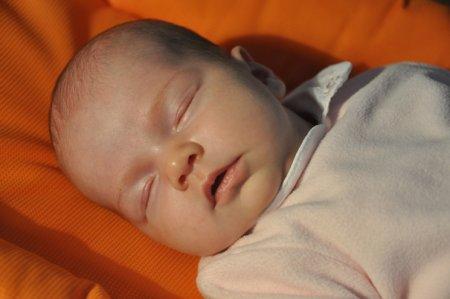 Śpiąca Zo